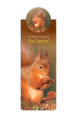 Продукт - Разделител за книга с диви животни - Катерица