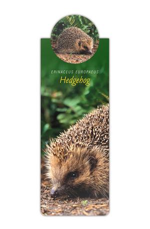 Продукт - Разделител за книга с диви животни - Таралеж