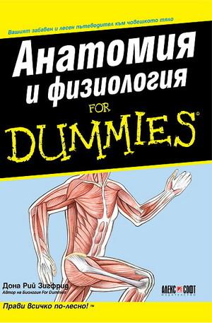 Книга - Анатомия и физиология
