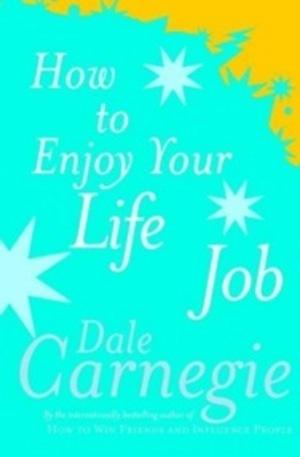 Книга - How To Enjoy Your Life And Job