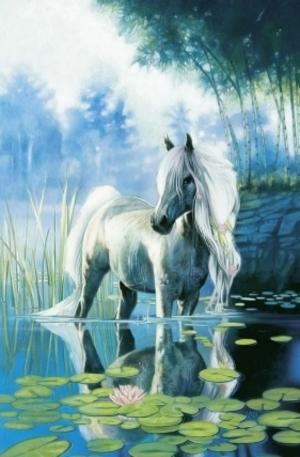 Продукт - In the waterlily pond - 1000