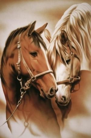 Продукт - Mare and Stallion - 1000