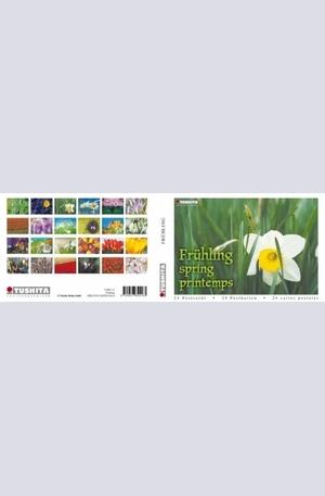 Книга - Springtime