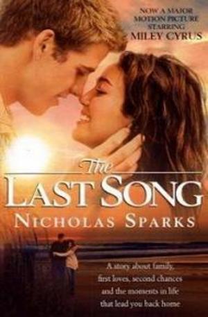 Книга - The last song