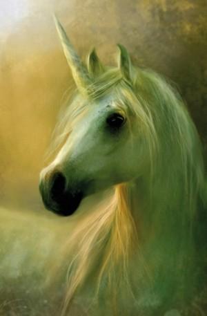 Продукт - Unicorn - 1000