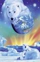 Arctic World - 1000