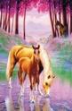 Dreamy horses - 100