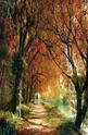 Forever Autumn - 2000