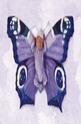 Hannah as a Butterfly - 500