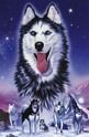 Huskies - 1000