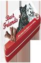 Метална кутия за моливи Best Friends