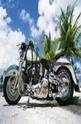 Motorbike - 1000