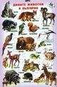 Пъзел дивите животни в България - 35 части