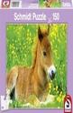 Sweet foal - 150
