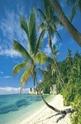 The Seychelles - 2000